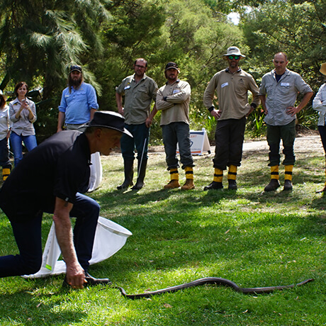 Living With Wildlife Training Courses