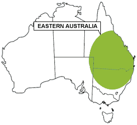 Eastern Australia Region