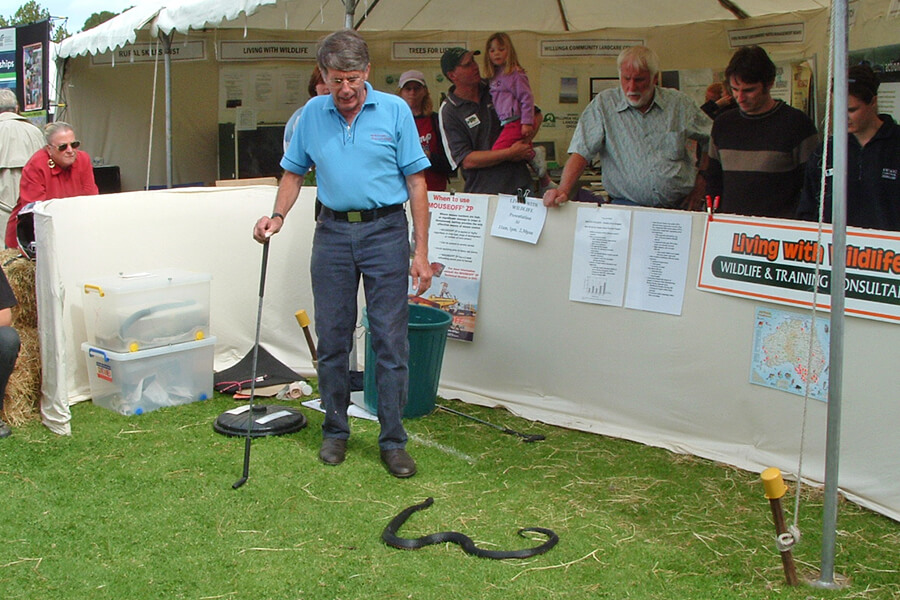 Living with Wildlife Snake & Reptile Displays