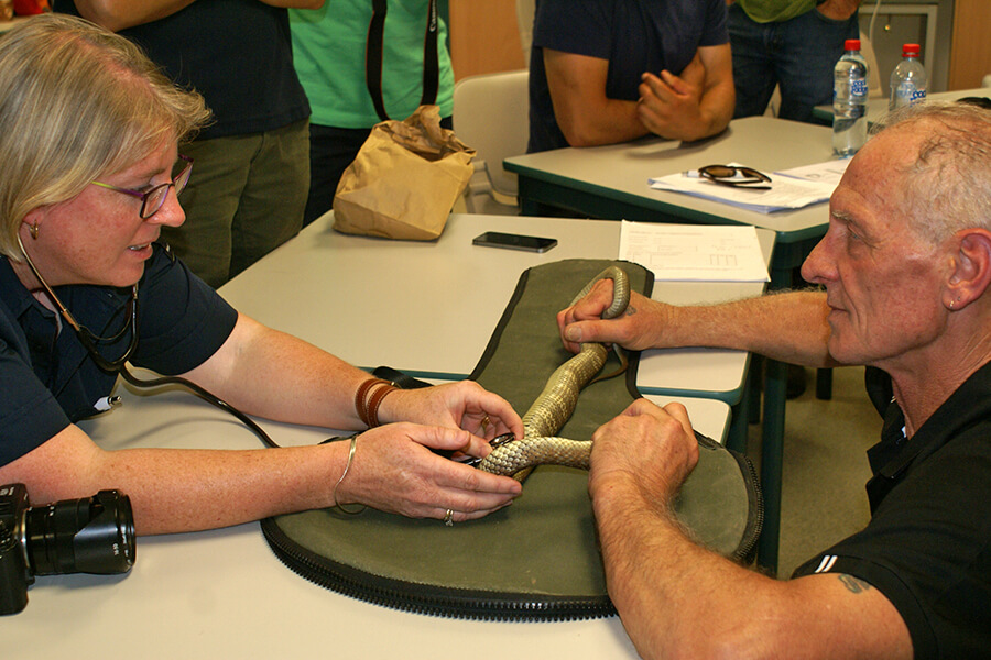 Living with Wildlife Venomous Snake Handling Training Courses