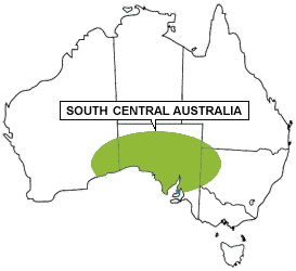South Central Australia Region - Living with Wildlife