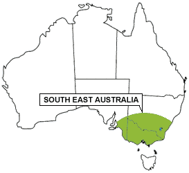 South East Australia Region - Living with Wildlife