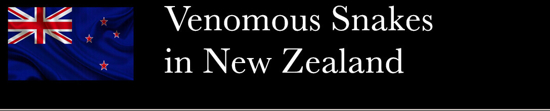 Venomous Snakes in New Zealand